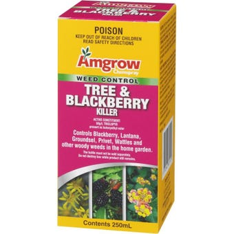 Amgrow Chemspray Tree & Blackberry Killer 250ml