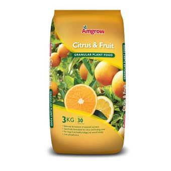 Amgrow Citrus & Fruit Granular Plant Food 3kg