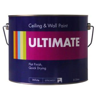 Ultimate 6L Ceiling Paint