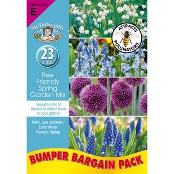 Mr Fothergill's Bee Friendly Spring Garden Mix