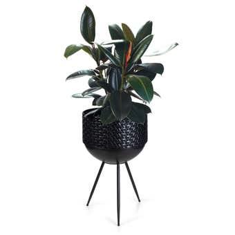 Takasho Luxe Planter Bowl on Legs Black