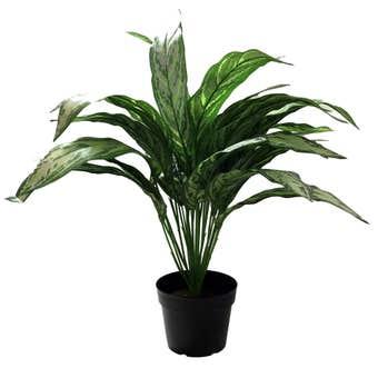 Botanic Lifestyles Artificial Dieffenbachia Tree 65cm