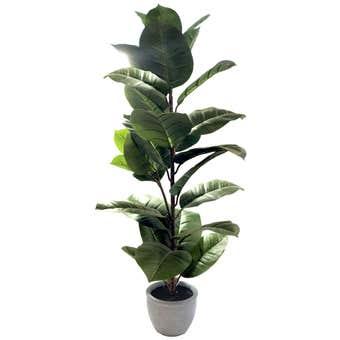 Botanic Lifestyles Artificial Rubber Tree 95cm