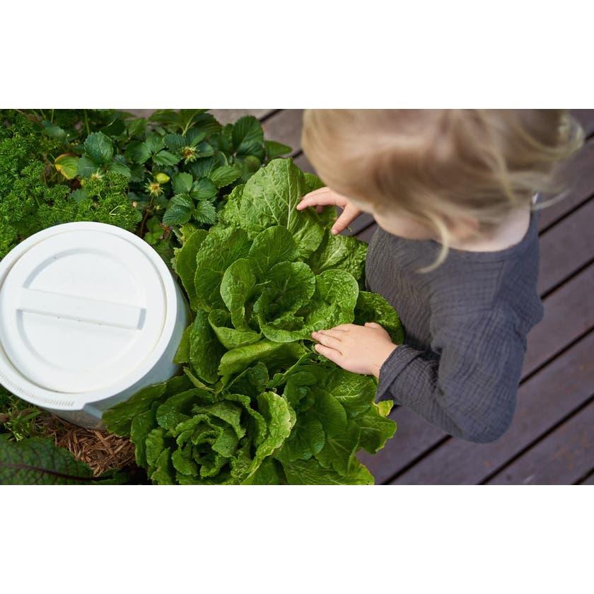 Composta Garden & Wormfarm In One